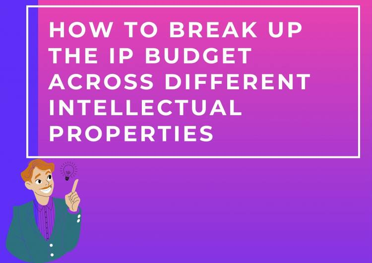HOW TO BREAK UP THE IP BUDGET ACROSS DIFFERENT INTELLECTUAL PROPERTIES